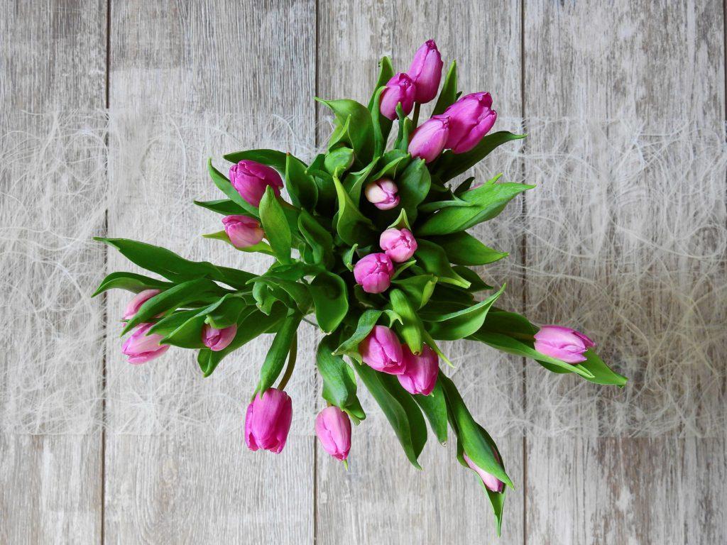 flower-2111552_1920