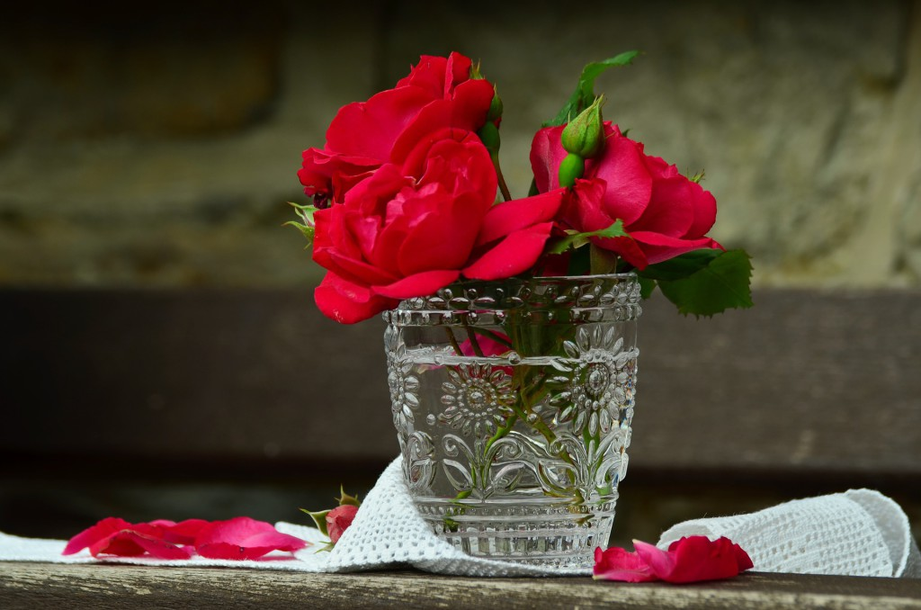 roses-822321_1920